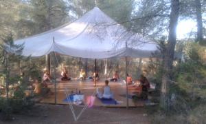 Yogareisen mit Anna Blume