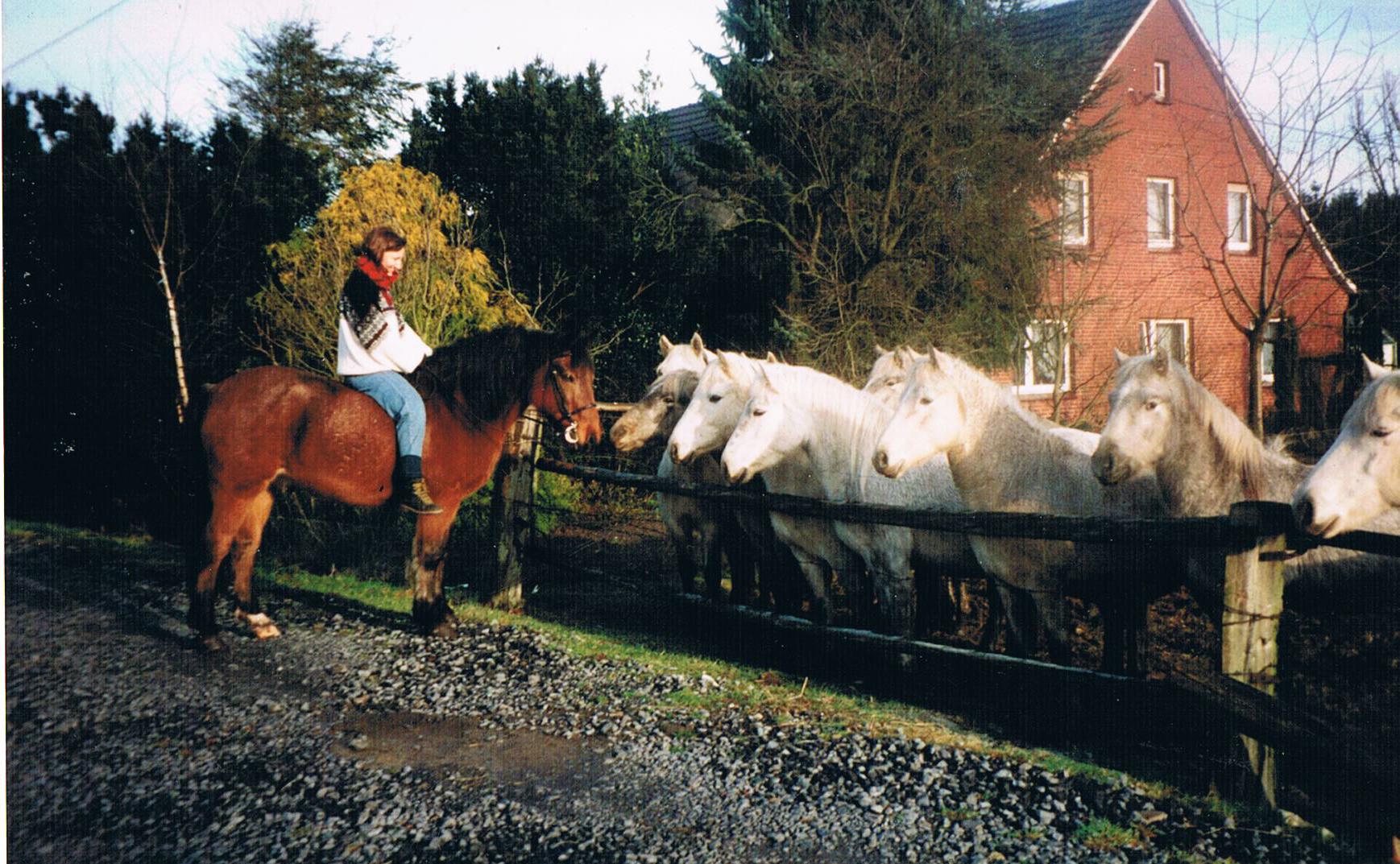 Jugend mit Pferden; Foto: ©Mirjam Steinbock
